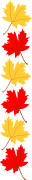 Fall Colors Maple Leaf Border Graphics