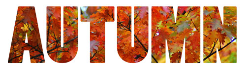 Colorful autumn word art banner, LeeHansen.com
